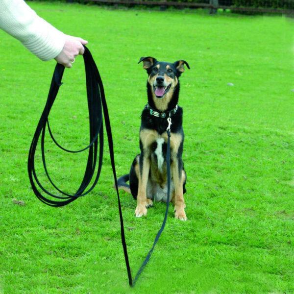 CLIX LINE DOG