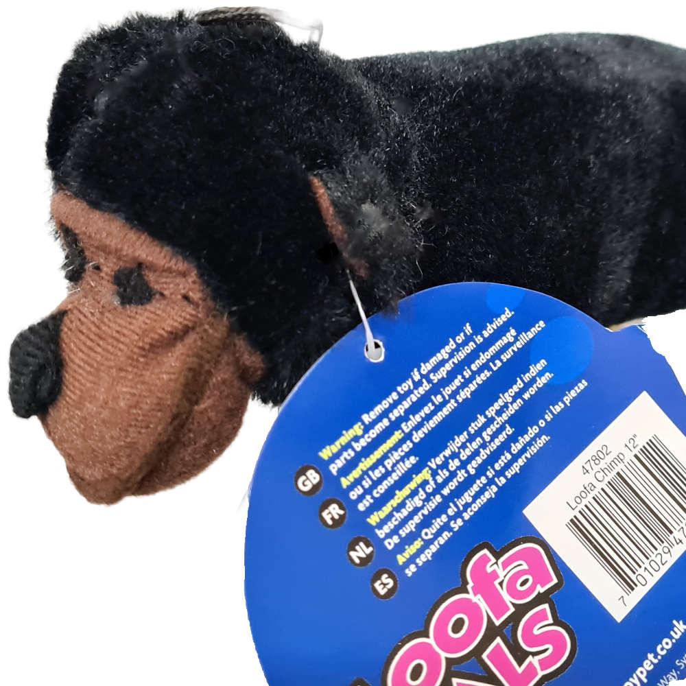 hp loofa chimp